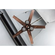 Unique style Discount ceiling fan led
