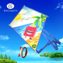free logo printing custom kite for kids