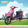 disk brake 450w 48v hot selling cheap electric scooter