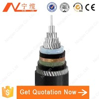 Steel-wire Armoured/SWA Wire & Cable Used for Engineering