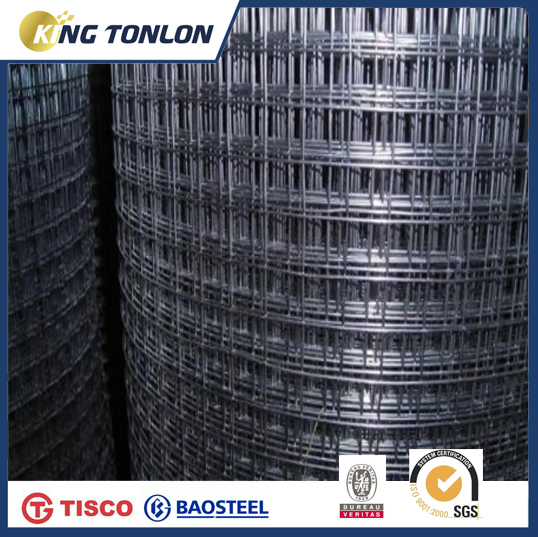 Stainless Steel Wire Mesh And Welded Wire Mesh Panel