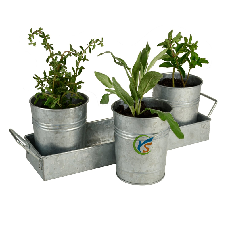 Planter Set, Galvanized Wrapped W/Color Insert