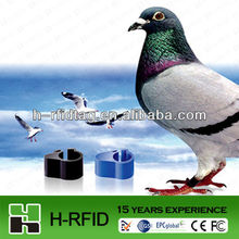 Animal RFID ring tag for bird legs factory quality accept Paypal