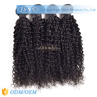 Soft and beautiful curly 100% virgin brazilian hair remy human hair