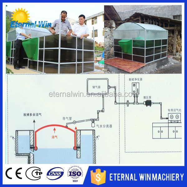 Low Cost biogas power plant 100m3 Biogas Plant for Electricity Generation