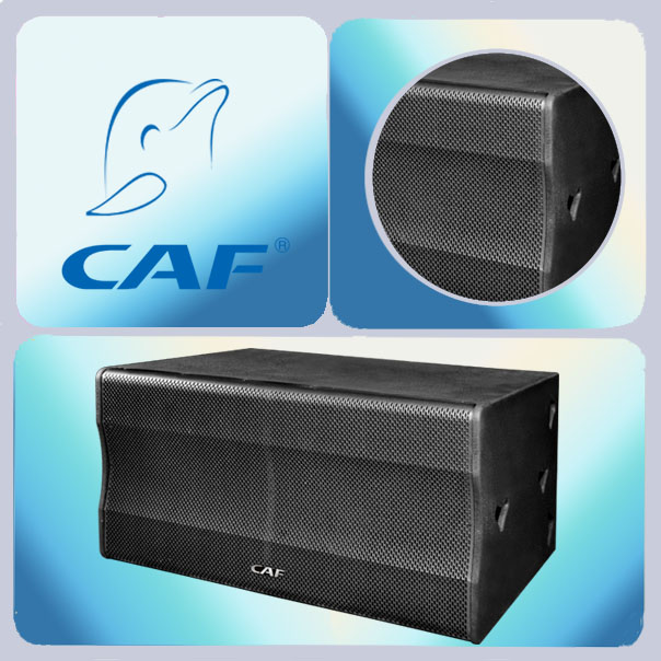 1000 watts subwoofer from CAF