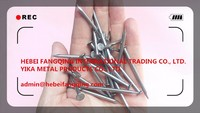 F.Q. INT'L FACTORY COST PRICE SUPPLY COMMON NAIL IRON NAIL FACTORY