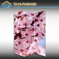 China Fancy Room Divider Curtain