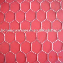 "1"" Plant Protection Hexagonal Wire Mesh"
