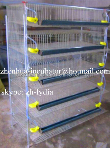 quail cage with automatic drinking system/ quail breeding cages /A Type layer cage (Lydia : 0086 15965977837)