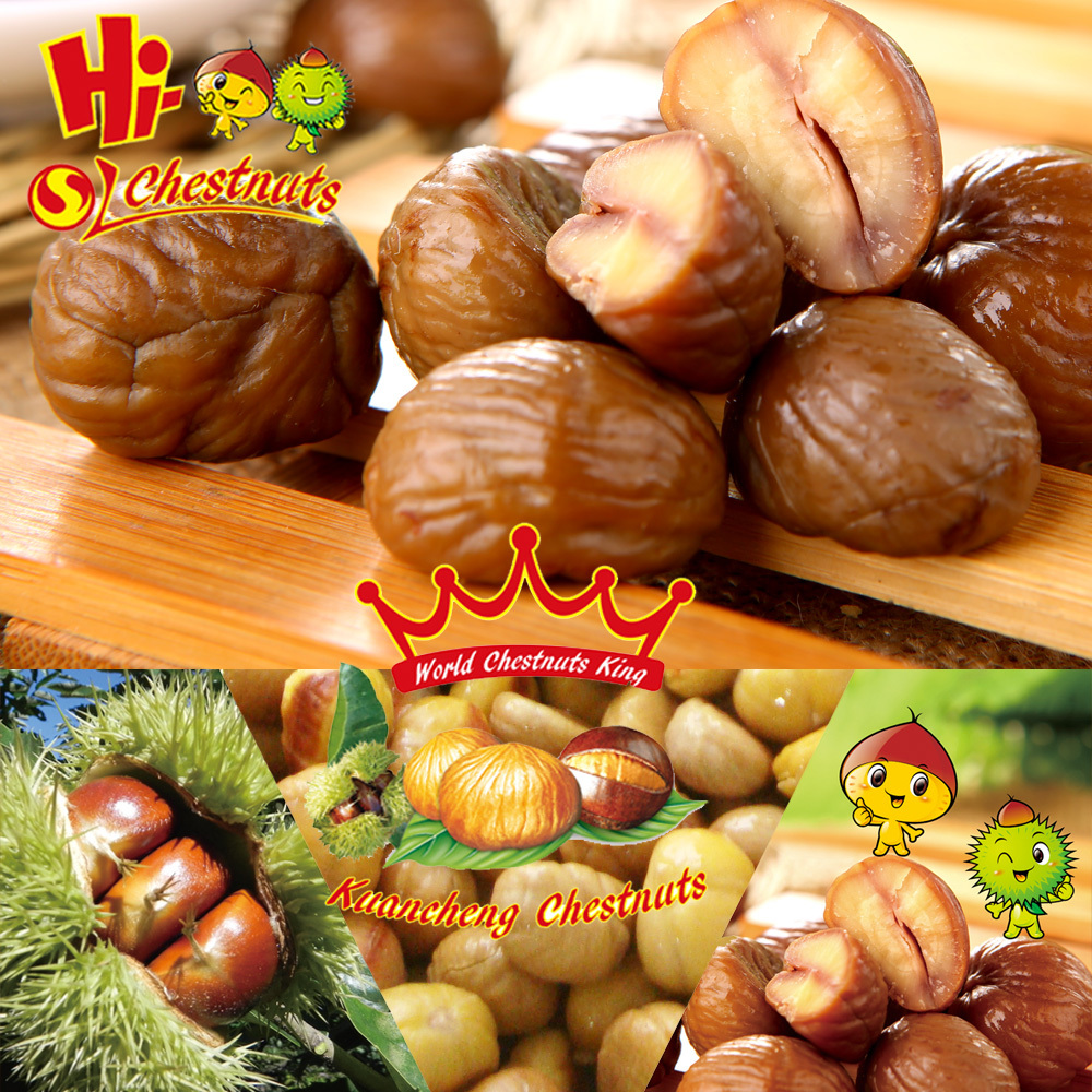 Ready to Eat Roasted Chestnuts Snacks---HALAL and Kosher Snacks Food