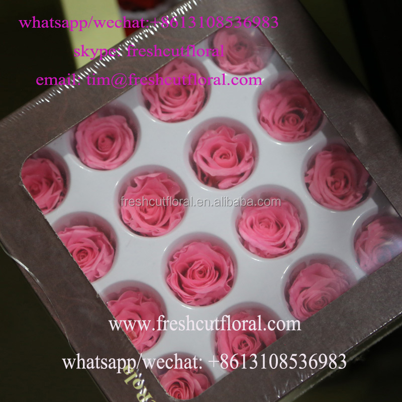 Assorted Preserved Cutting Flowers Arrangements From Best Flower Supplier For Daily Usage