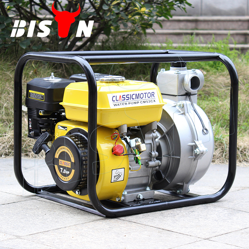 BISON(CHINA) BS20 Small Portable 2 Inch Small Depot Gasoline 12v Home Water Pump
