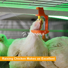 Tianrui Automatic Poultry Drinking System For Chickens