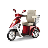 3 Wheel Powerful Electric Tricycle Mobility Scooter