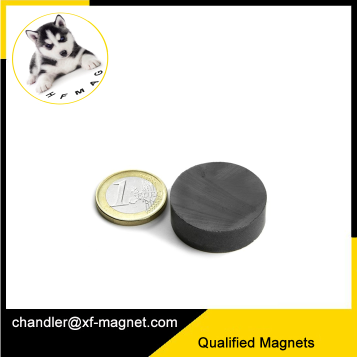Strong Ferrite Magnets Big Size 100Diameter