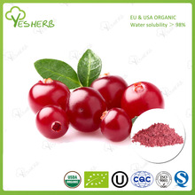 YesHerb supply cranberry extract powder