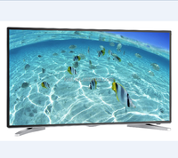 hot new design 43inch led tv falt screen television led tv 43'' with very cheap price