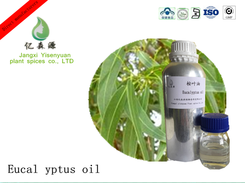 Edible Eucalyptus Citriodora Essential Oils Pharmaceutical Grade Eucalyptus Oil Bulk Lemon Eucalyptus Oil Prices