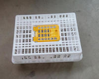 Plastic poultry transport crate for chicken and duck