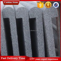 Cut-To-Size Stone Form G654 granite Black Color swimming pool coping
