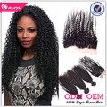 Alibaba wholesale price kinky curly virgin hair with closure