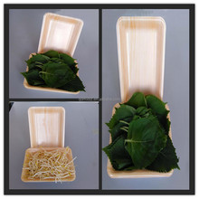 Disposable Takeaway Plastic Container plastic food foam fruit packaging tray