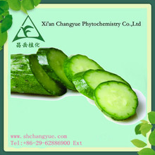 Factory supply Cucumber Extract 10:1 extract powder