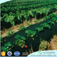 Hydrophilic spunbond pp nonwoven weed control mat/fabric/cover non woven/non-woven