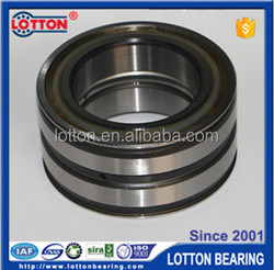 SL/SL04 Double Row Full Complement Cylindrical Roller Bearing SL045004PP