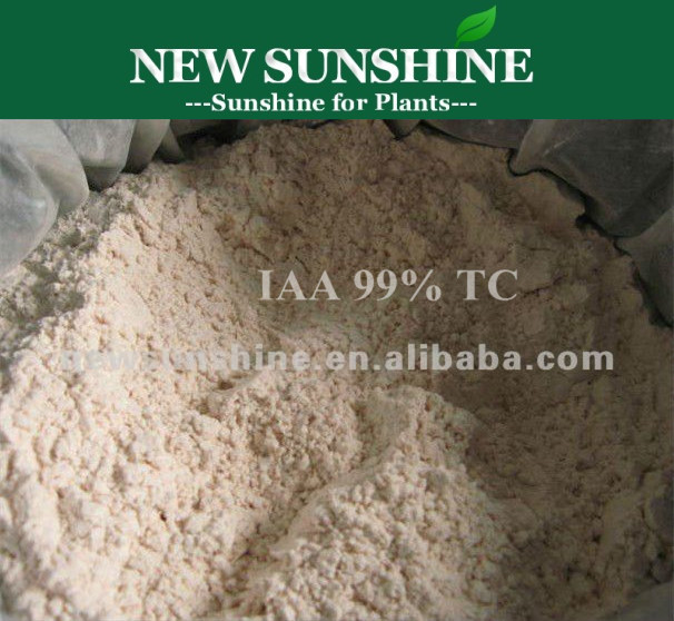 Auxin Indole-3-acetic acid (IAA) 87-51-4