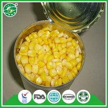 Advanced testing Grade A price canned sweet corn from china