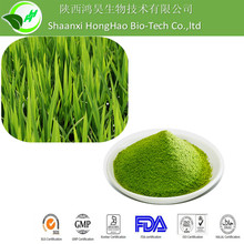 Free Sample Dried Pure organic wheat grass powder/ wheat grass powder/wheat grass