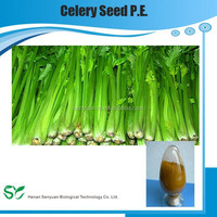 Top Quality Pure Natural Celery Seed P.E.