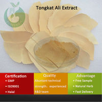 Best Price Tongkat Ali Extract For Instant Coffee Tongkat Ali Plus