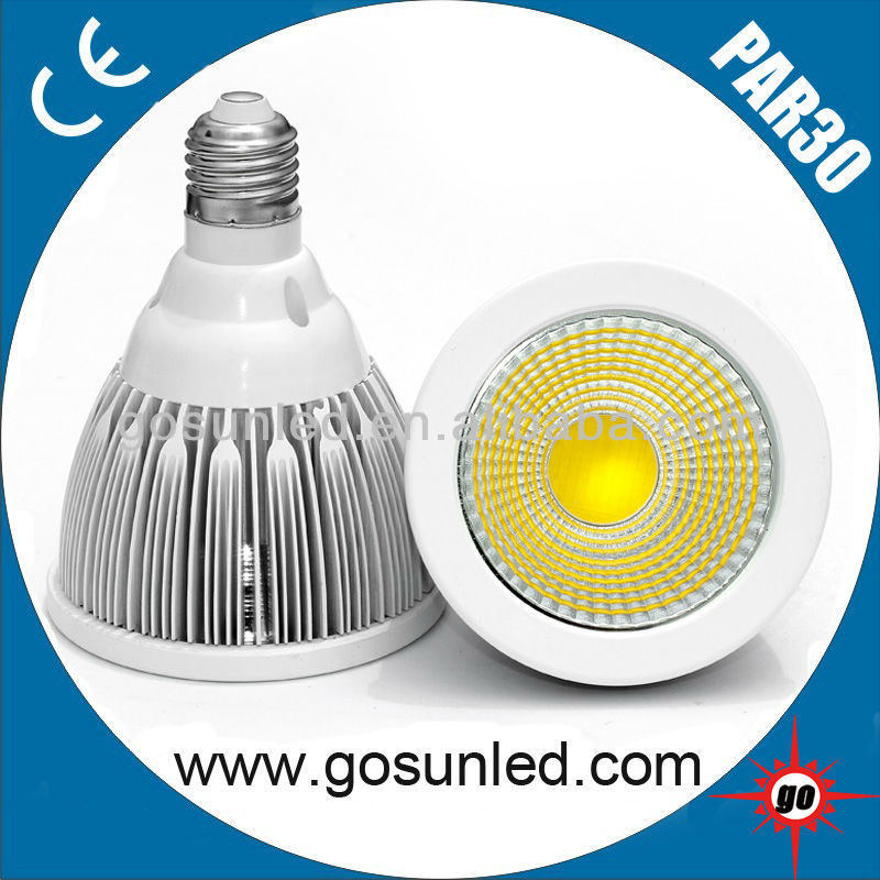 Epistar chips 110lm/w CRI>82 10W COB LED Spotlight