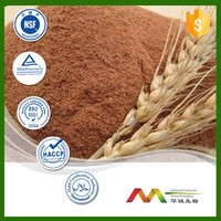 NSF-cGMP maunfacture and 100% natural barley malt extract powder wholesales