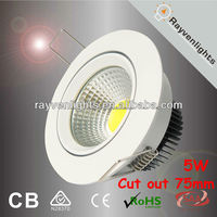 White housing High bright cheap cob led downlight 5W