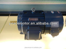 Y2 three phase denso 12v motor
