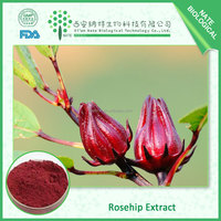 Strong immune system Natural Rose hip extract 25% anthocyanidins