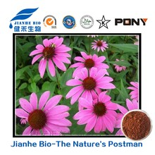 2016 Competitive price Herb Medicine 100% Natural Echinacea Purpurea Extract polyphenols1%-4%/choric Acid/skin shine beauty