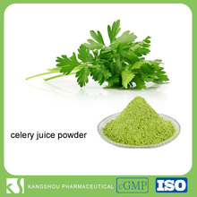 100% watersoluble organic Natural Celery Juice Powder