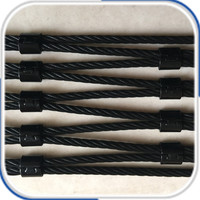 Black oxide ferruled model stainless steel wire rope net