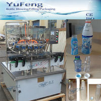 Automatic PET / Glass bottle washer / bottle rinser