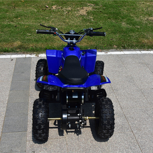 CE aHot Sell ATV Electric ATV 500-1000W Cheap ATV Quad Bike