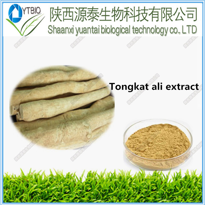 Tongkat Ali Extract/Tongkat Ali Root Extract 10:1 20:1 50:1 100:1 200:1/Tongkat Ali Extract Powder