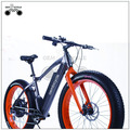 "Online wholesale China 19"" fat tire ebike"