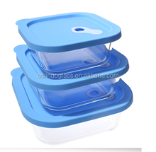 Glass food container with silicone lid borosilicate glass food container