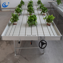 hot sale ebb and flow bench Hydroponics growing system