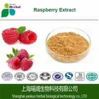 Fine Quality GMP Certified Black Raspberry Extract